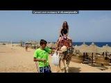 «Египет сентябрь 2010г» под музыку Натали - Ветер с моря дул. Picrolla